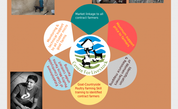 Centre for Livestock Biz Model