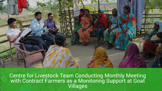 Centre for Livestock team conducting Monthly Meeting
